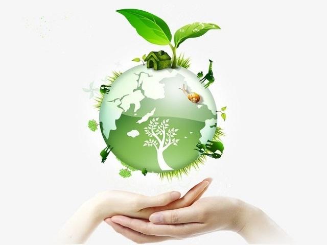 Bảo vệ môi trường là gì?
