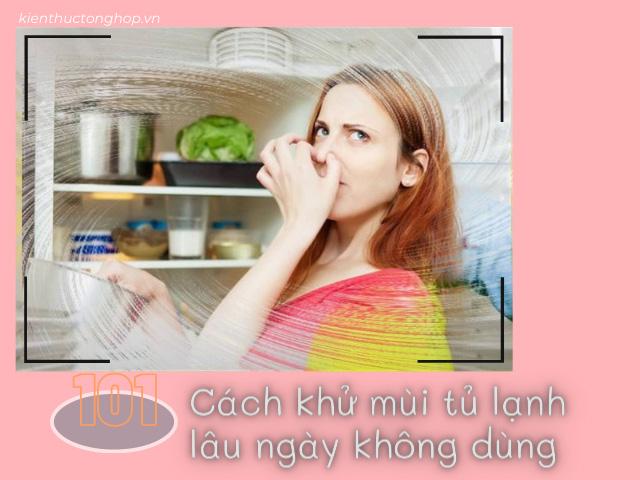 [101 Bí kíp] Cách khử mùi tủ lạnh lâu ngày không dùng