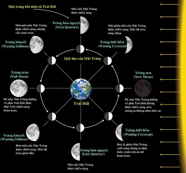 Chu kỳ của mặt trăng