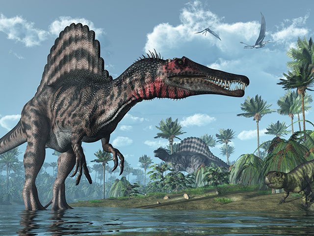 Những con vật khổng lồ nhất thế giới