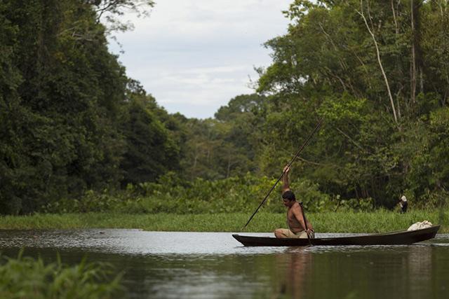 thuỷ quái sông amazon