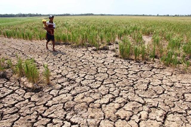biến đổi khí hậu gây ra hậu quả gì