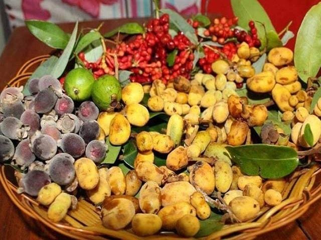 Những loại trái cây lạ ở nước ta