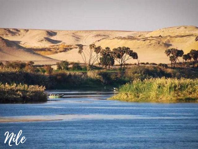 sông nào dài nhất thế giới