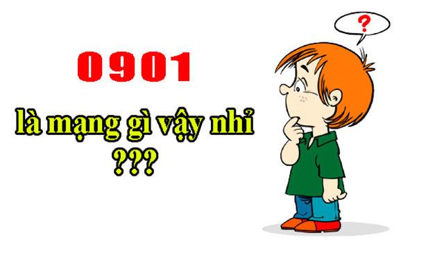 090 là mạng nào