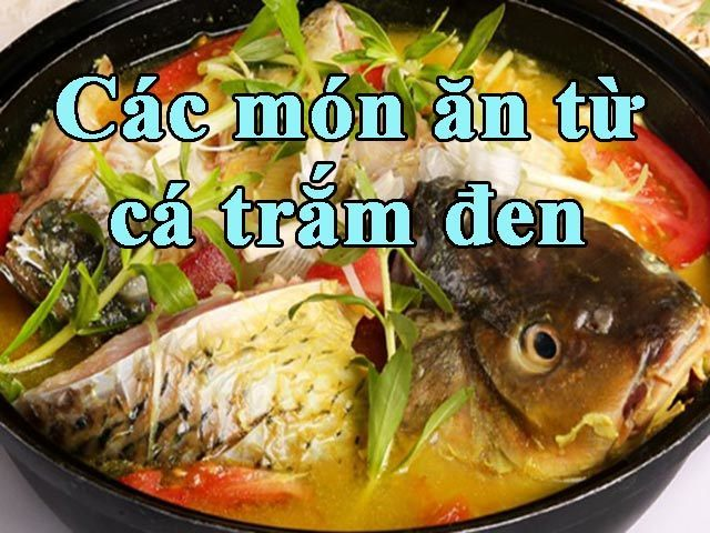 Công thức và cách làm các món ăn từ cá trắm đen dễ làm và hấp dẫn