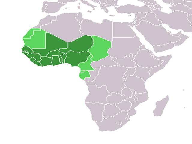 Tây Phi thuộc khu vực tại phía Tây của lục địa Châu Phi