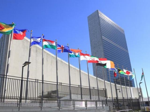 cơ cấu tổ chức của Liên Hợp Quốc
