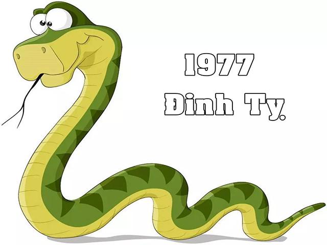 Tuổi ĐInh Tỵ - 1977