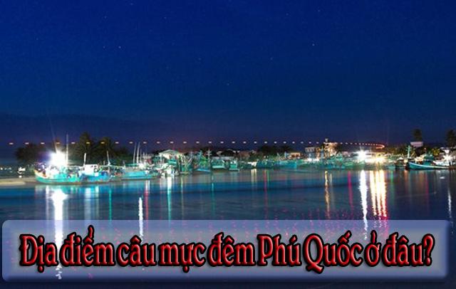 Địa điểm câu mực đêm Phú Quốc ở đâu
