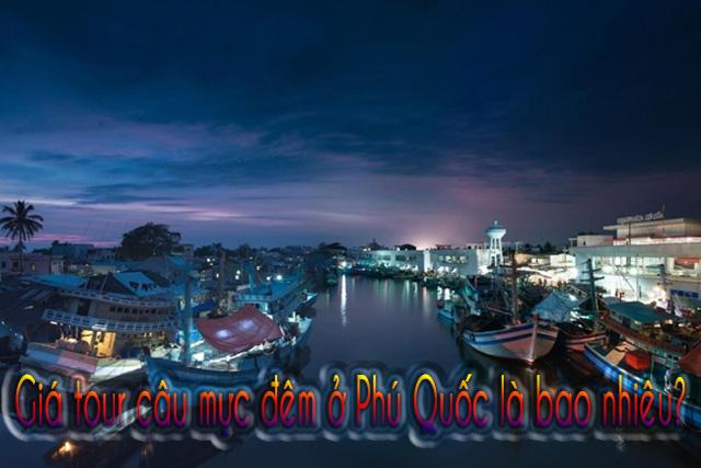 Giá tour câu mực đêm ở Phú Quốc