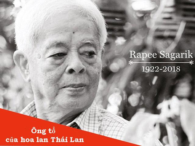 Hình ảnh giáo sư Rapee Sagarik