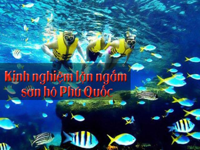 Kinh nghiệm lặn ngắm san hô ở Phú Quốc